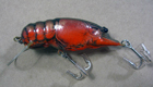 Bagley Small Fry Crayfish DC2 (Dark Crayfish on Orange)[2]