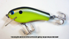Bagley B Flat GS9 (Black/Silver Scales on Chartreuse)[8]