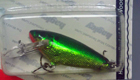 Bagley Small Fry Shad H69G (Hot Green/Chartreuse on Gold Foil)[5]